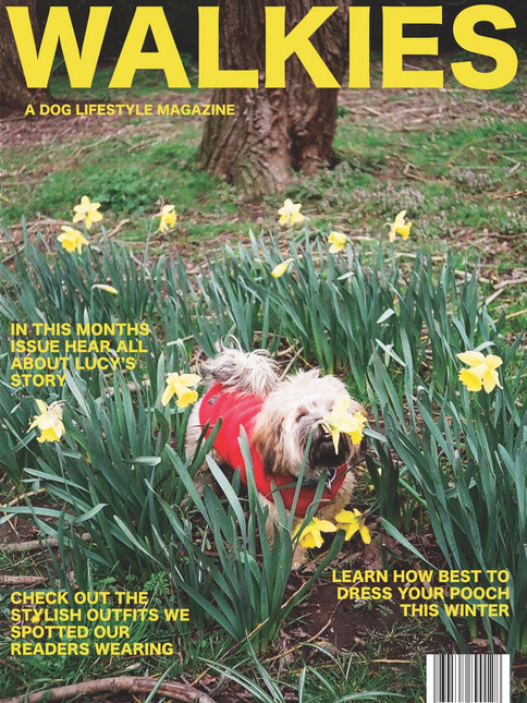 WALKIES magazine for dog walkers