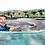 Thumbnail: Dolphin Royal Swim