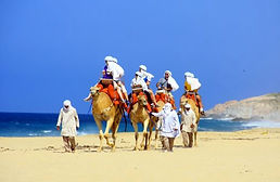 Cabos-camel-outback-excursion-A.jpg