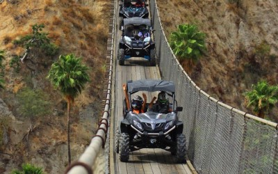 RZR and ATVs