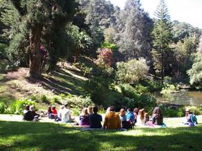 Visita Guiada - Jardins de Monserrate