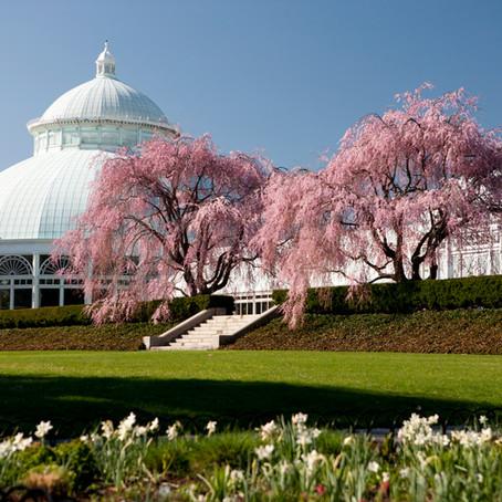 Grand Hyatt New York x The New York Botanical Garden
