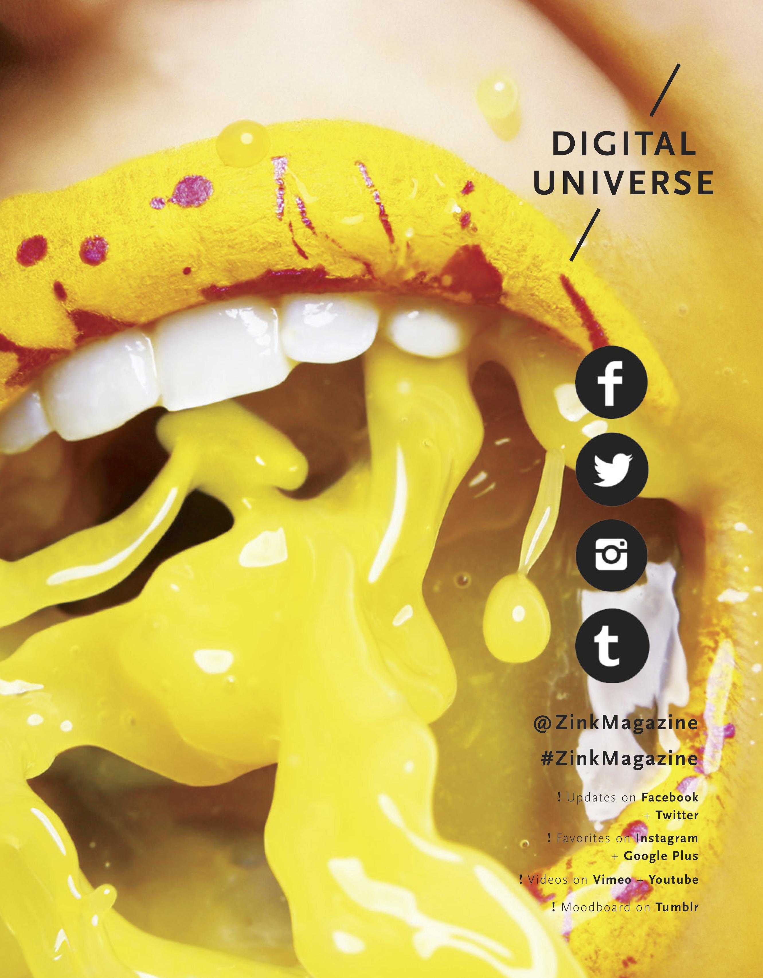 Social Media Ad Page - Z!NK Magazine