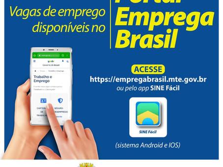 Plataformas virtuais disponibilizam 52 vagas para moradores de Ribeirão Pires