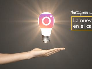 Instagram Insights: La nueva luz en el camino