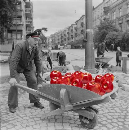 Throwback apple wheelbarrow.jpg