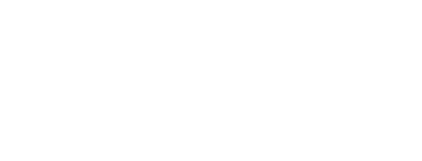 iVolution advanced software systems