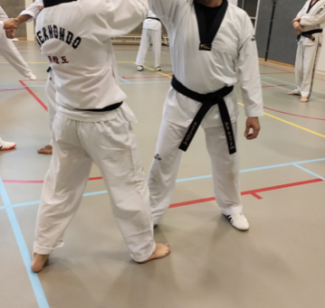 Taekwondo Saju op stage zelfverdediging.