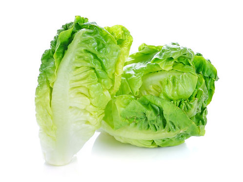 Baby Cos Lettuce (Pre-Packaged)