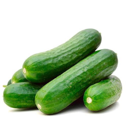 Lebanese Cucumber (Pr-Packed)