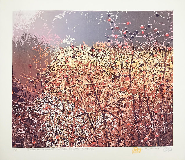 Rosehips and Rainpuddles by Anne  Jones