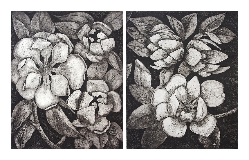 Magnolias Diptych by Carolyn Howse