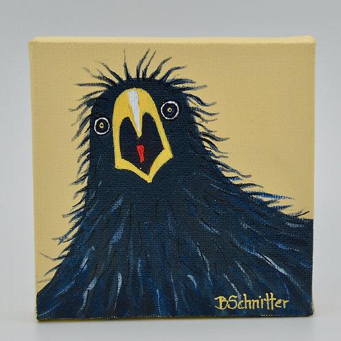 Crow by Bonnie Schnitter