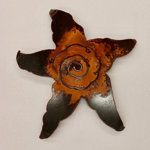 med starfish by Renae Lehmann