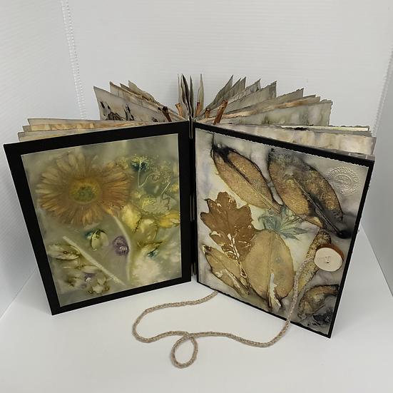 Nature's Memoir  by Loretta Golby