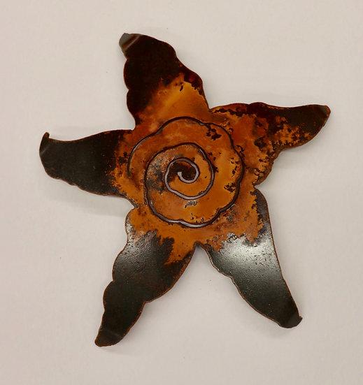 lg starfish by Renae Lehmann