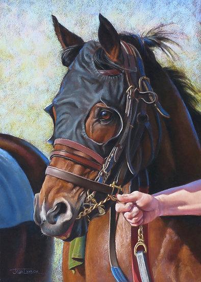 Racebound by Joan Larson
