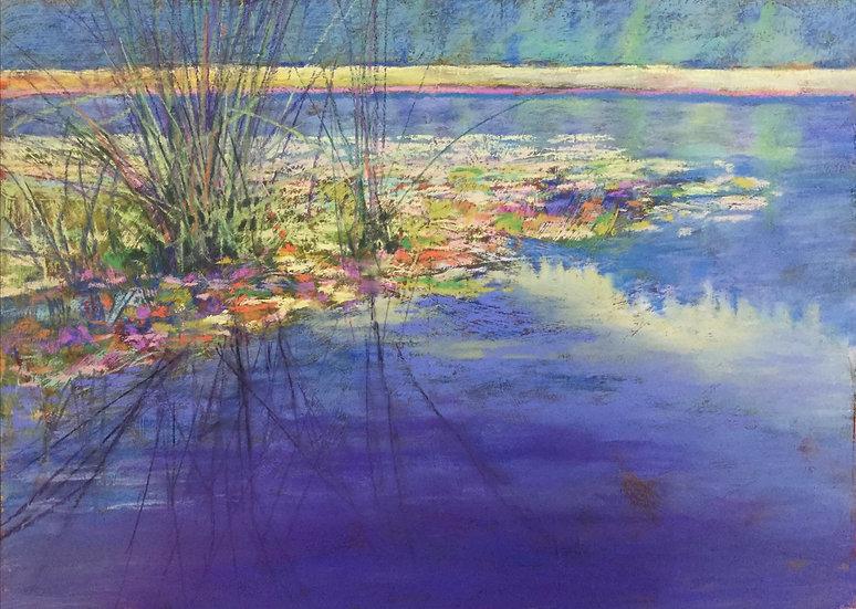 Waterlilies...Chemainus Lake  by Jeanne Aten