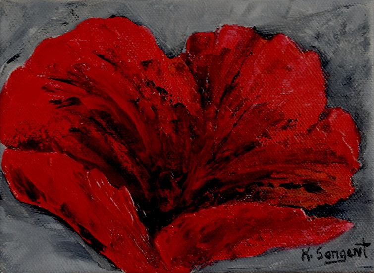 Poppy by Karen Sargent