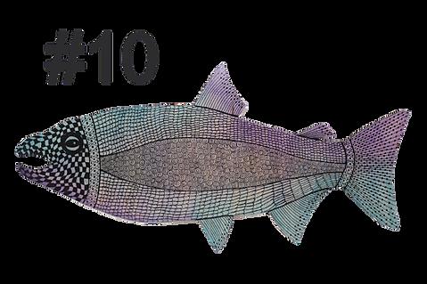 Fish # 10 by Gail Moyls