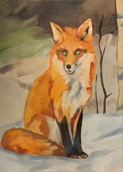 Fox by Brad Scromeda