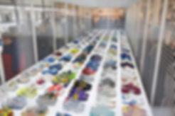 adidas spzl stockists online