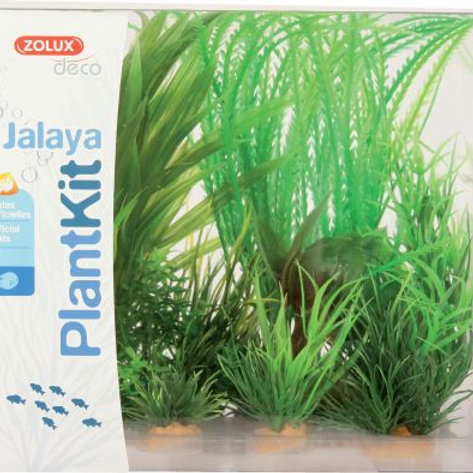 Plantkit Jalaya N1