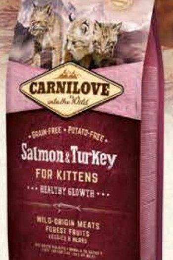 Carnilove Chaton Saumon Dinde