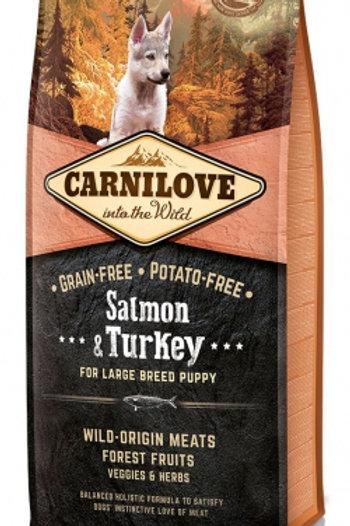 Carnilove chiots grandes races saumon et dinde 1.5kg