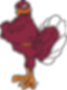 Hokie Bird.png