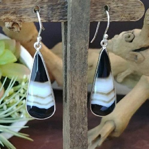 Striated Botswana Agate Earrings
