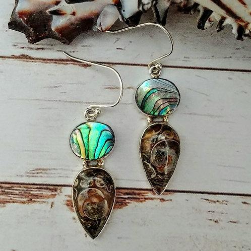 Turritella Jasper & Abalone Sterling Earrings