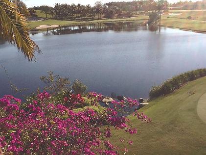 Clear Lakes Aquatic Weed Control Inc - Florida lake, pond, wetland and preserve management.