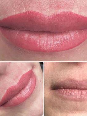 pm lip 1.jpg