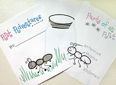 Ant Journal Pages.jpg