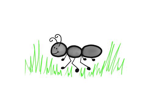 Ant Adventures Summer Camp