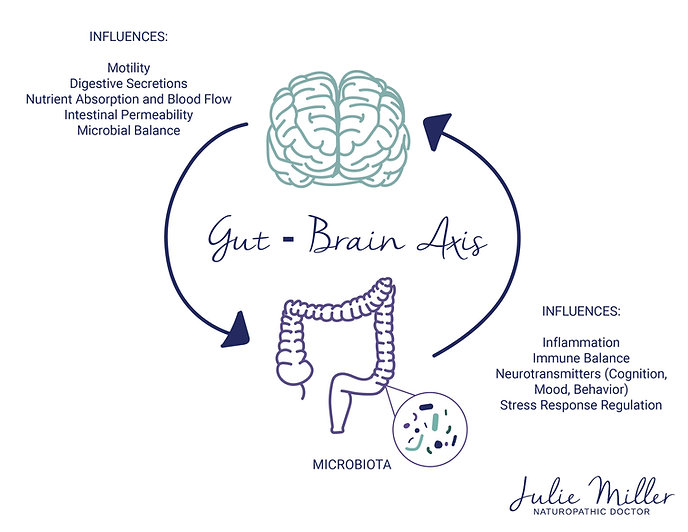 Gut Brain Axis Julie Miller ND.jpg