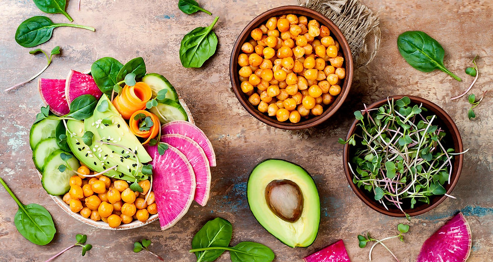 Concierge Nutrition | Sarasota, FL