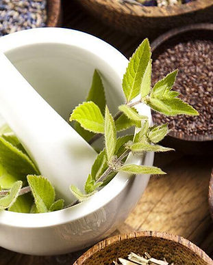 botanical-medicine-5.jpg