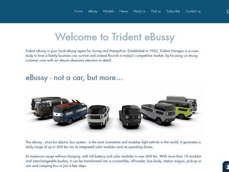 Trident eBussy publishes its website