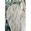 Thumbnail: Ailes d'ange thé 60cm