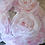 Thumbnail: Roses poudrées rose
