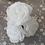 Thumbnail: Roses blanches