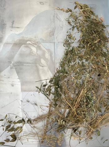 """Carmen"", zinc and dry plants, 48"" x 60"""
