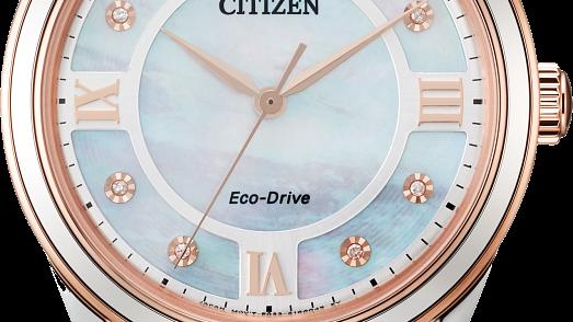 Ladies Citizen Eco-Drive Arezzo EM0876-51D