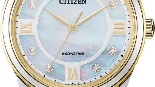Ladies Citizen Eco-Drive Arezzo EM0874-57D