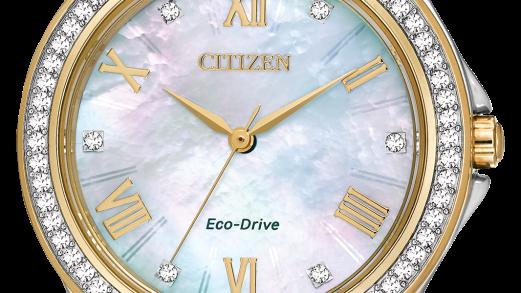 Ladies Citizen Eco-Drive Drive EM0234-59D