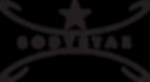 Bodystar Fitness Logo Trans PNG.png