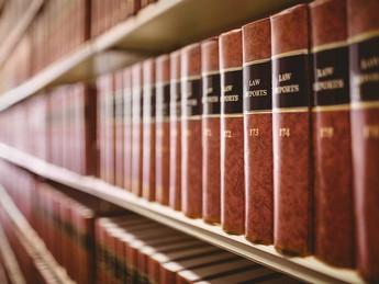 Arte y etc. en las leyes