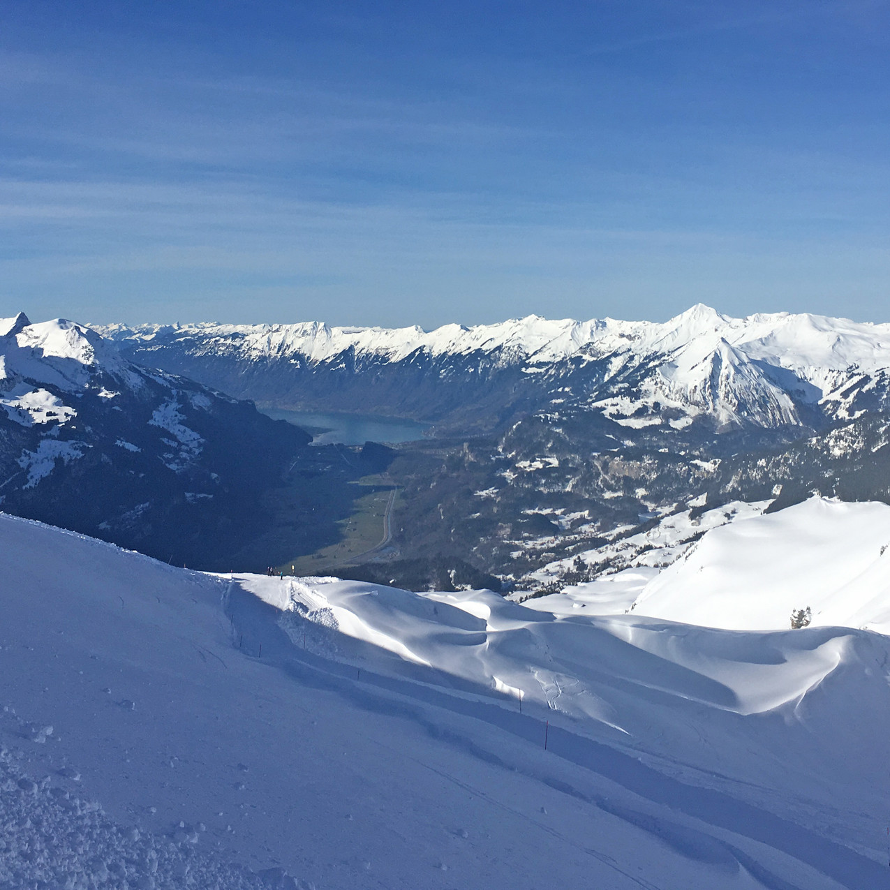 Alpentowersicht